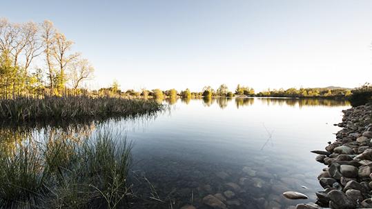Un bonito paseo para todos: Laguna del Salmoral, en Prádena