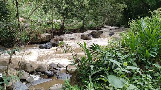 Pasear rodeado de montañas:  «Quebrada del Valladar» en Prádena